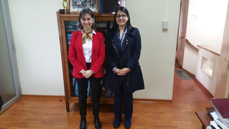 Reunión Procuraduría Chillán, Seremía BB.NN. Ñuble y CONAF